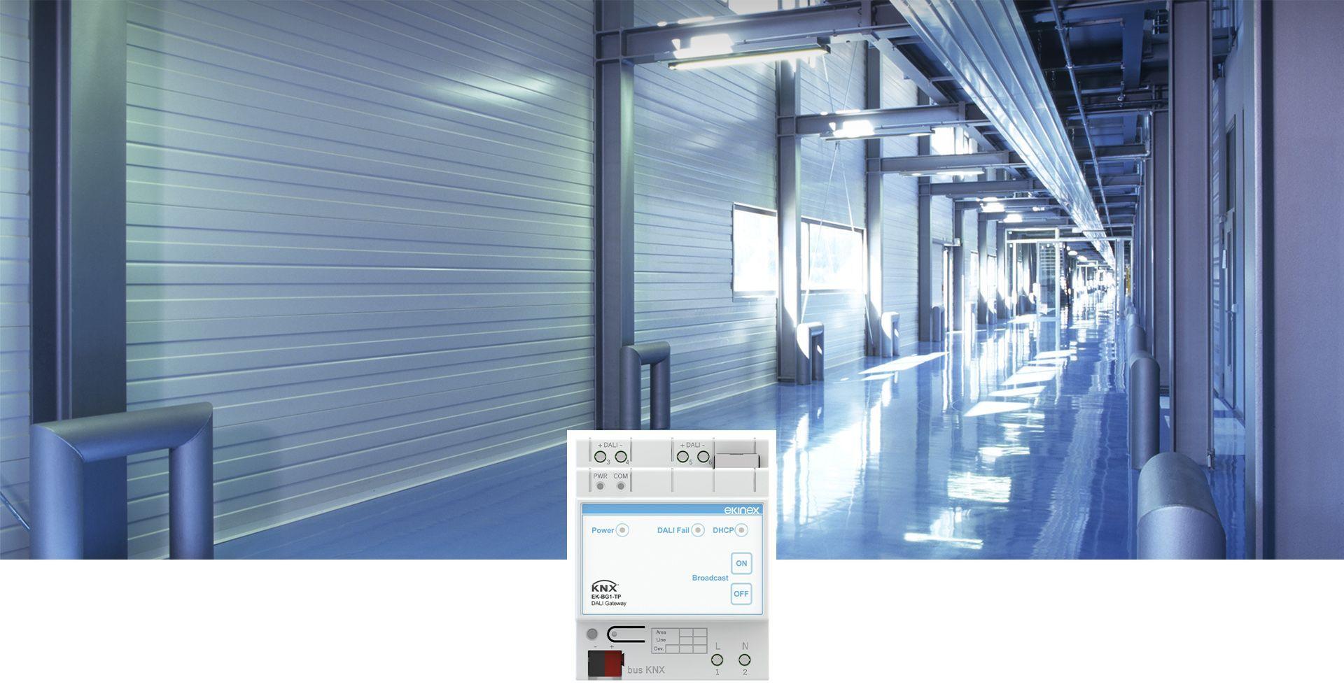 Nuovo Gateway KNX-DALI EK-BG1-TP
