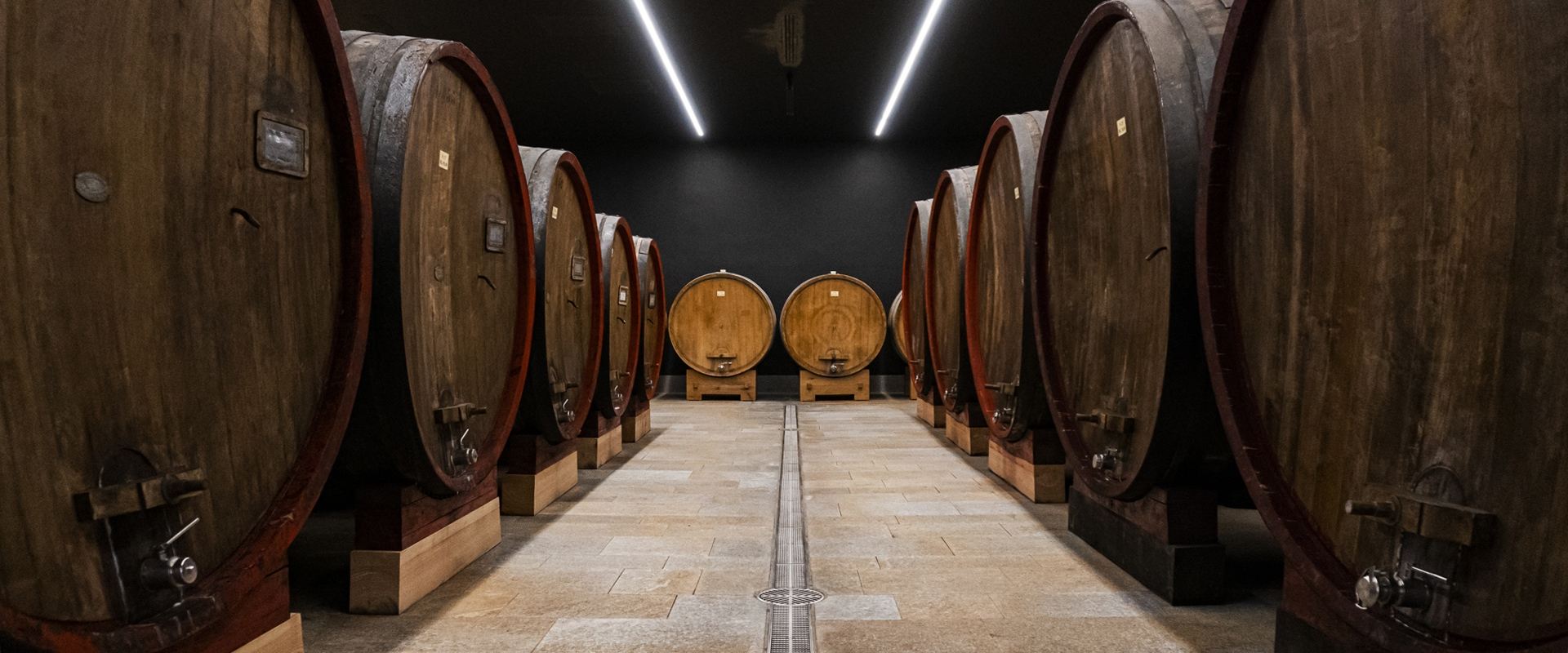 Cantina Nervi: a spectacular winery between history, architecture and innovation